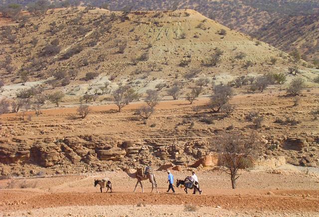 Marokko - Tamri