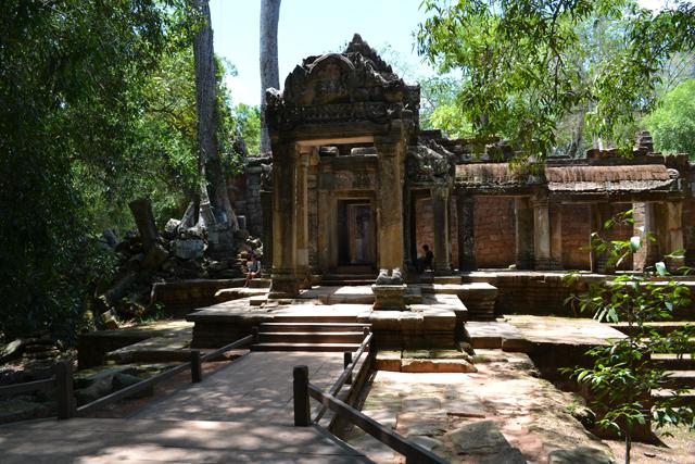 Ta Prohm - Angkor Cambodja