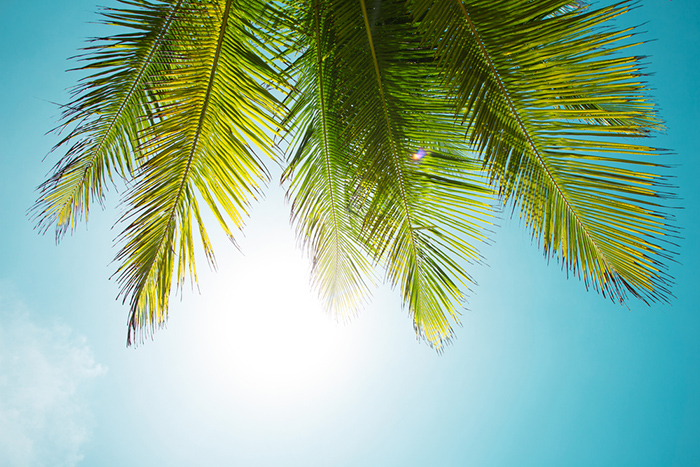f5a0d01780b Nooit meer gestrest op vakantie: zo regel je dat | Reisdoc.nl